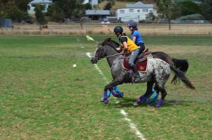 Blue Bandage Polocrosse Action Shot